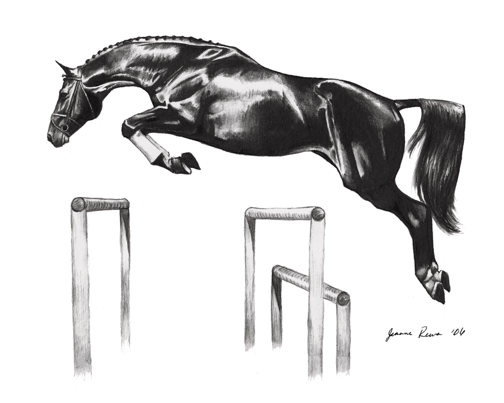 Water soluble graphite drawing of Warmblood stallion Contender.