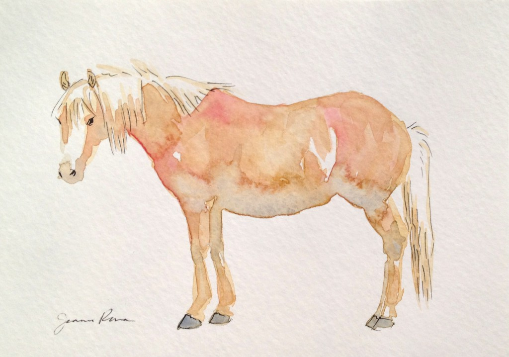 Watercolor and ink sketch of a fuzzy palomino pony.
