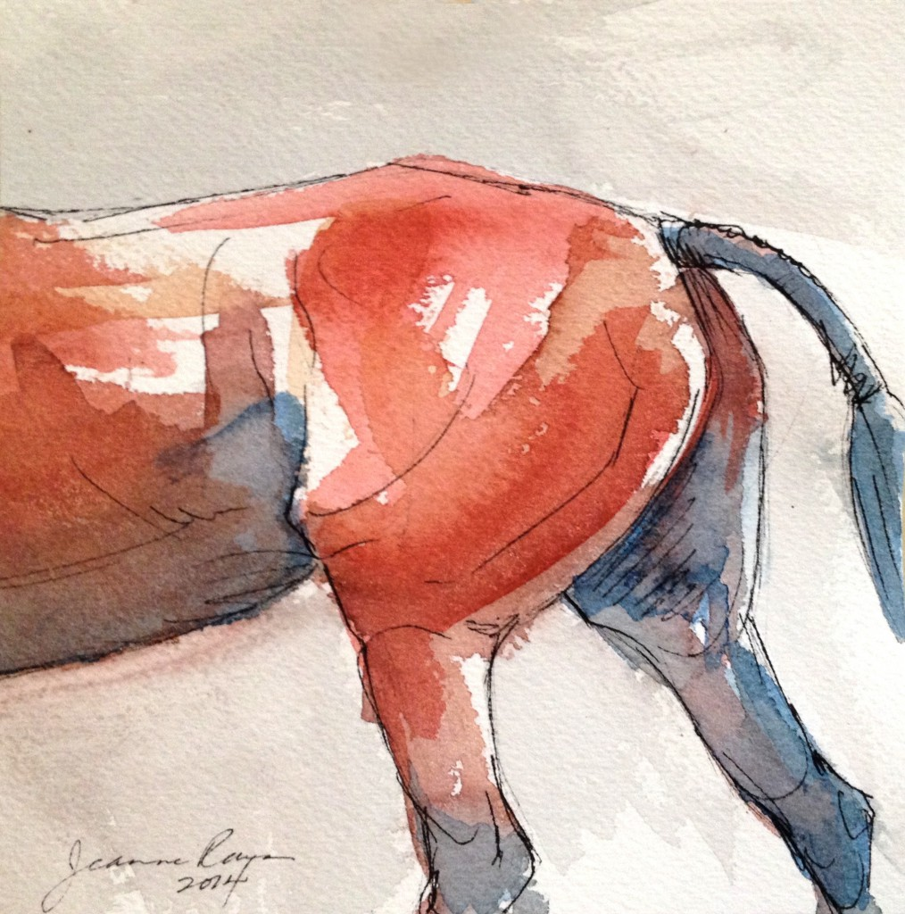 Watercolor and ink painting of hunter horse haunches.