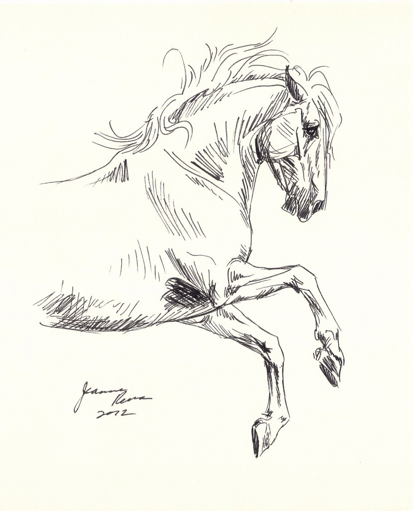 Ink sketch of a gray stallion rearing